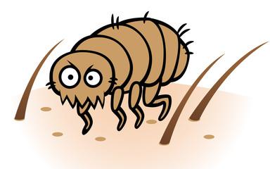Flea on human or dog skin