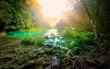 Leinwandbild Motiv Sunny morning in the mountainous jungle of the national park Sem