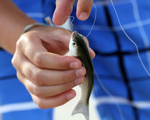Little fish caught on hook in the arms