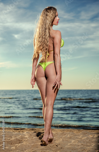 Sexy woman with long blond hair in bikini posing on the beach
