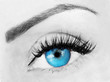 Постер, плакат: eye with bushy lashes