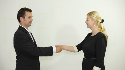 Businessman and businesswoman handshaking