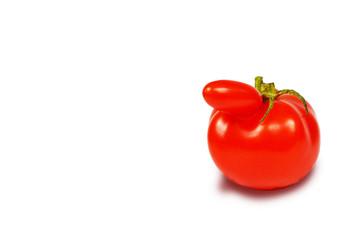 Tomatommy