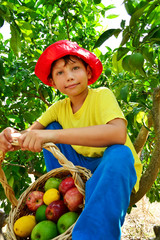 Kind mit apfeln