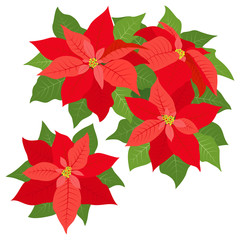 Red poinsettias decorations isolated on white