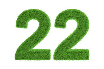 Number 22 with a green grass texture