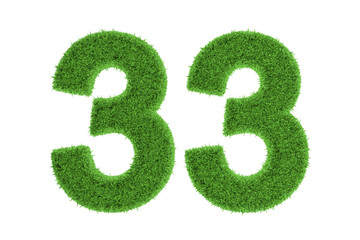 Number 33 with a green grass texture