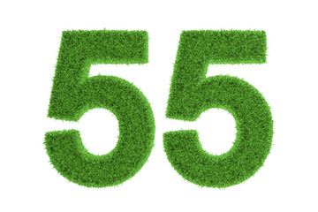 Green eco-friendly symbol of number 55, on white