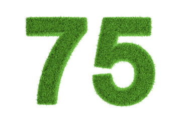 Number 75 with a green grass texture