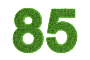 Number 85 with a green grass texture