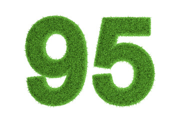 Number 95 with a green grass texture