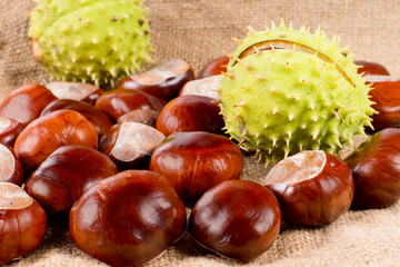 Fresh raw sweet chestnuts