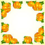 Bright orange vector pumpkins frame
