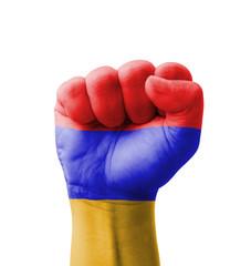 Fist of Armenia flag painted, multi purpose concept