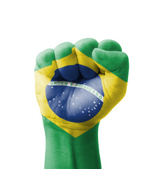 Fist of Brazil flag painted, multi purpose concept