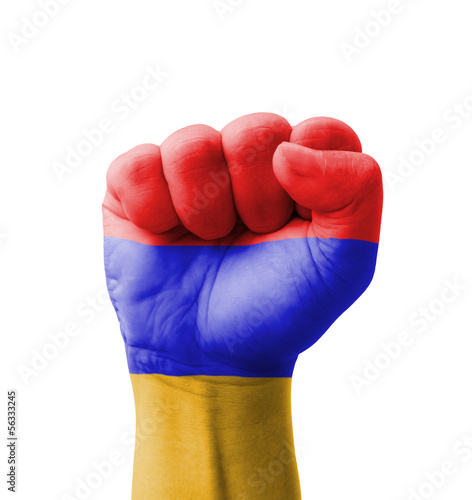 Fist of Armenia flag painted, multi purpose concept