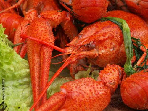 Fresh crawfish
