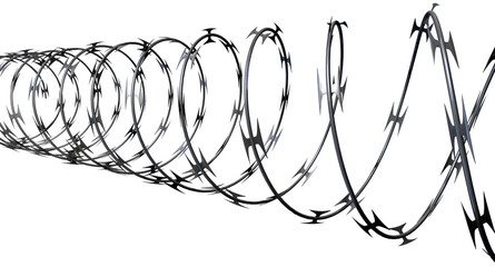 Razor Wire Perspective