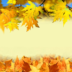 Herbstliche Karte zum Beschriften