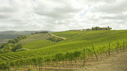 Tuscany vineyards timelapse
