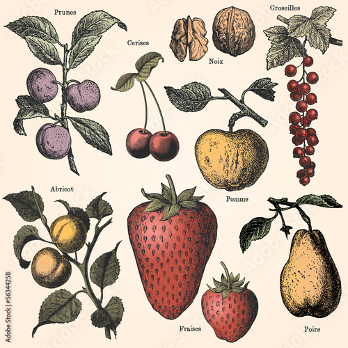 ogrod-owocowy