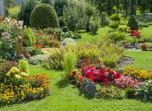 Zagospodarowany ogród kwiatowy