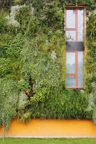 Leinwanddruck Bild Bepflanzte Fassade