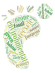 environmental info word cloud concept