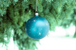 Blue sphere on fir branch