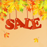 word sale and autumn maple leaves.seasonal autumn sale.vector