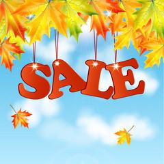seasonal autumn sale.word sale autumn maple leaves against the b