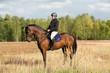 Reiter mit Braunem in der Heide