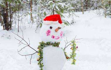 Snowman with bucket on the head