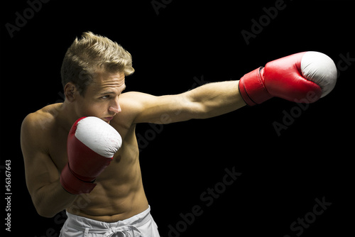 Boxer punching