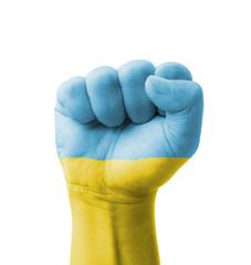 Fist of Ukraine flag painted, multi purpose concept