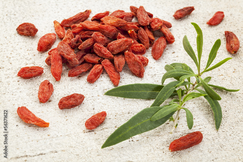 goji berry with a leaf