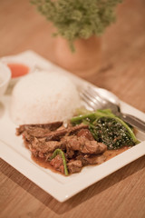 Pork sauce with steamed rice