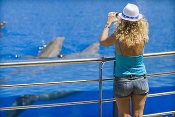 Femme photographiant des dauphins