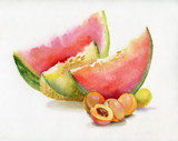 Beautiful watercolor watermelon