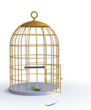 Golden Birdcage isolated. Freedom concept