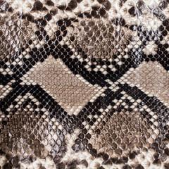 Snake skin pattern background