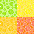 Vector background with citrus