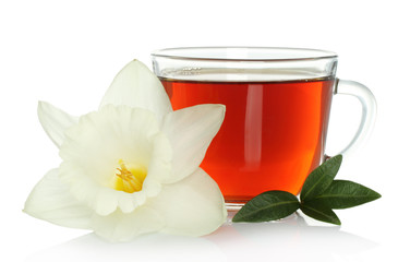 Cup of tea with flower and leaves on white background.