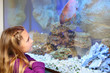 Little girl looks at big fish swimming in aquarium.