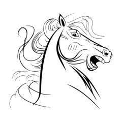 Unbridled wild neighing horse close up head