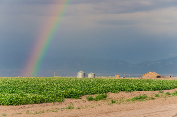 Rainbow and Storm Clouds over a Farm