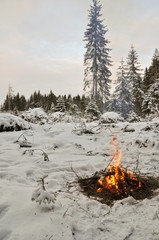 Campfire in the winter forest