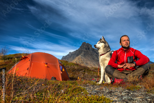 Camping with Siberian Husky - 56398260