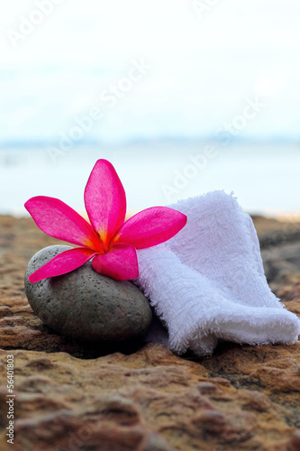 Frangipani flowers - pink flowers and a white towel