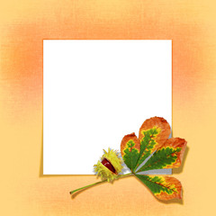 autumn leaf on a white form for a card